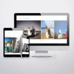 Créatio du site internet du photographe olivier harrassowski par l'agence web et voilà prod